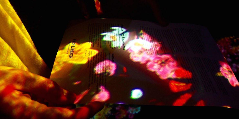 teamLab's Transcending Boundaries at Pace Gallery