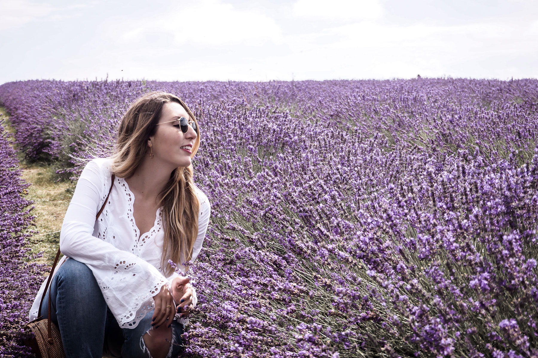 A Morning at Mayfield Lavender